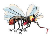 4 grupe ljudi koje komarci najviše vole