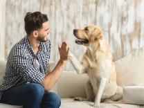 12 stvari koje radi Vaš pas u pokušaju da Vam nešto saopšti