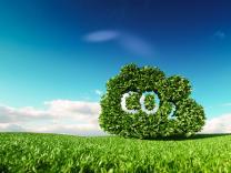 5 najboljih načina da CO2 izvučemo iz atmosfere