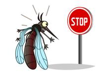 10 prirodnih načina da isterate sve insekte iz doma