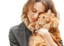 Šta sve leči mačka kad prede?