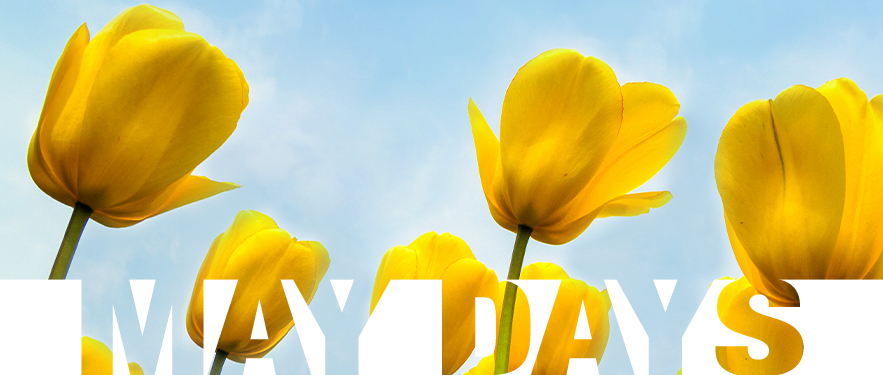 U proleće sve RASTE, samo naše CENE OPADAJU!